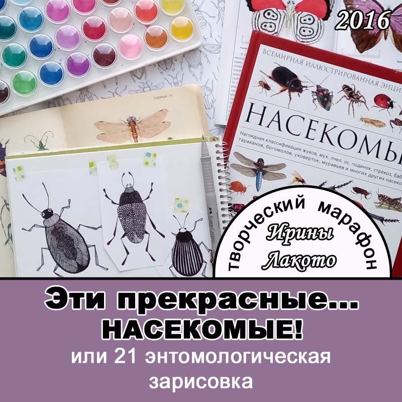 Ирина Лакото: Эти прекрасные насекомые Творческий марафон